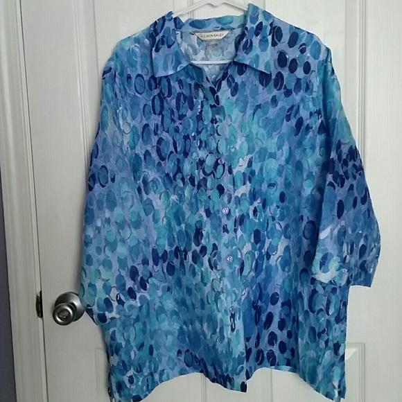 Allison Daley Tops Nwot Blue Semi Sheer Blouse 18 Poshmark